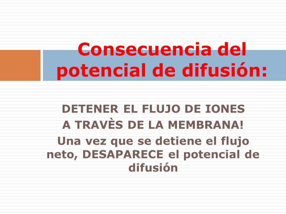 DETENER EL FLUJO DE IONES A TRAVÈS DE LA MEMBRANA! Una vez que se detiene el flujo neto, DESAPARECE el potencial de difusión Consecuencia del potencia