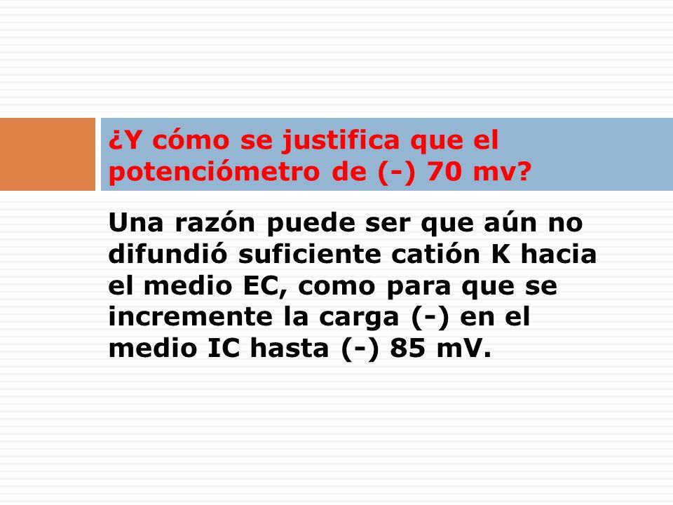 Una razón puede ser que aún no difundió suficiente catión K hacia el medio EC, como para que se incremente la carga (-) en el medio IC hasta (-) 85 mV