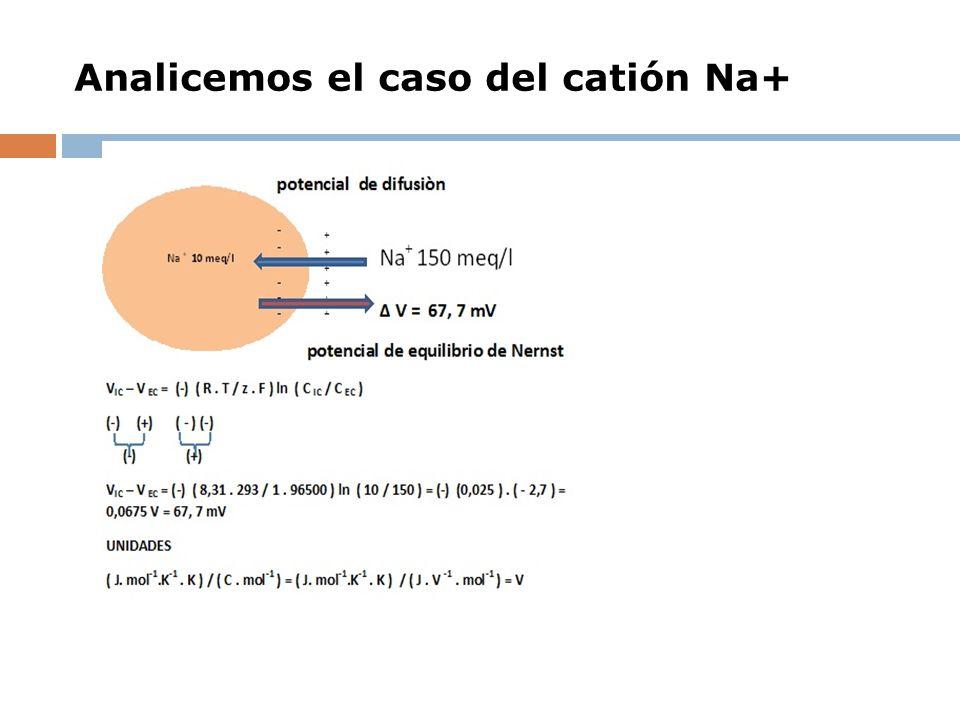 Analicemos el caso del catión Na+