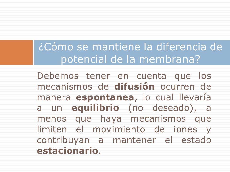 Debemos tener en cuenta que los mecanismos de difusión ocurren de manera espontanea, lo cual llevaría a un equilibrio (no deseado), a menos que haya mecanismos que limiten el movimiento de iones y contribuyan a mantener el estado estacionario.