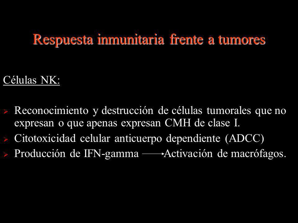Células NK: Reconocimiento y destrucción de células tumorales que no expresan o que apenas expresan CMH de clase I. Citotoxicidad celular anticuerpo d