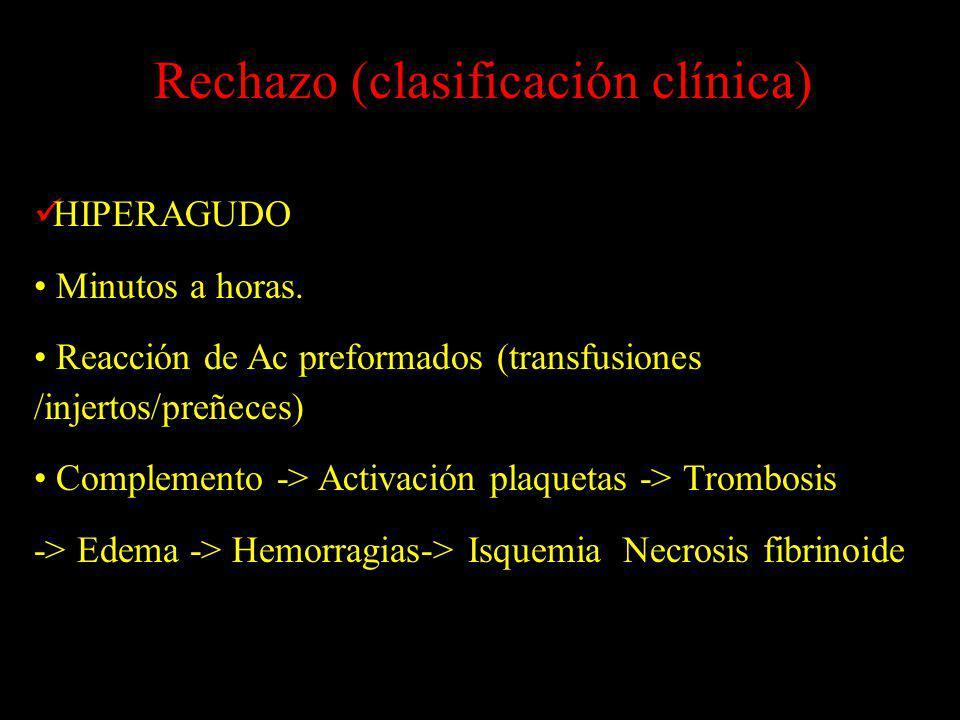 HIPERAGUDO Minutos a horas. Reacción de Ac preformados (transfusiones /injertos/preñeces) Complemento -> Activación plaquetas -> Trombosis -> Edema ->