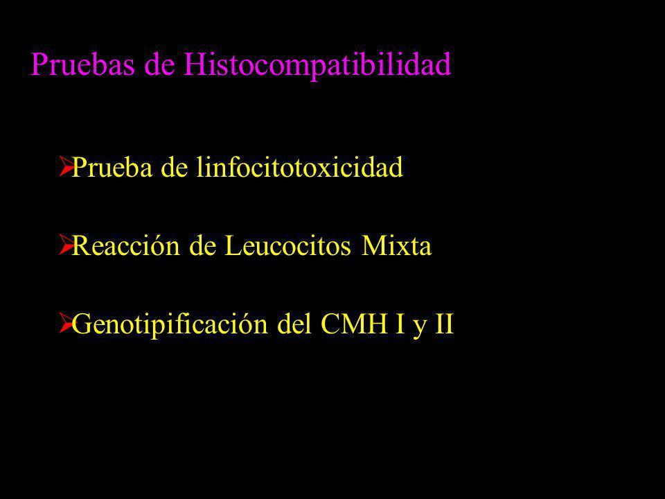 Pruebas de Histocompatibilidad Prueba de linfocitotoxicidad Reacción de Leucocitos Mixta Genotipificación del CMH I y II