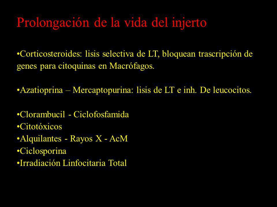 Prolongación de la vida del injerto Corticosteroides: lisis selectiva de LT, bloquean trascripción de genes para citoquinas en Macrófagos. Azatioprina