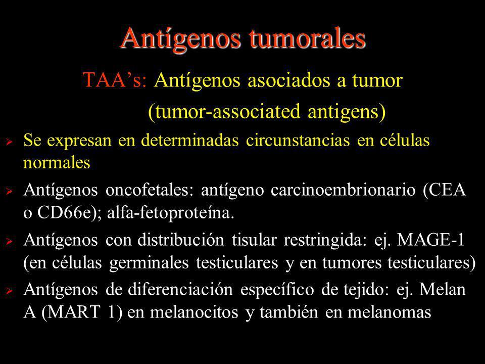 Antígenos tumorales TAAs: Antígenos asociados a tumor (tumor-associated antigens) Se expresan en determinadas circunstancias en células normales Antíg