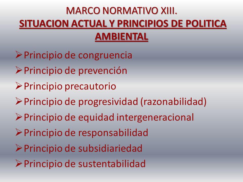 MARCO NORMATIVO XIII. SITUACION ACTUAL Y PRINCIPIOS DE POLITICA AMBIENTAL Principio de congruencia Principio de prevención Principio precautorio Princ