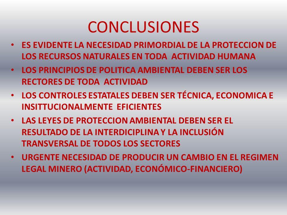 CONCLUSIONES ES EVIDENTE LA NECESIDAD PRIMORDIAL DE LA PROTECCION DE LOS RECURSOS NATURALES EN TODA ACTIVIDAD HUMANA LOS PRINCIPIOS DE POLITICA AMBIEN
