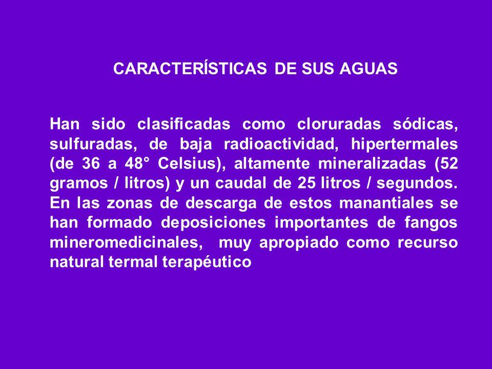CARACTERÍSTICAS DE SUS AGUAS Han sido clasificadas como cloruradas sódicas, sulfuradas, de baja radioactividad, hipertermales (de 36 a 48° Celsius), a