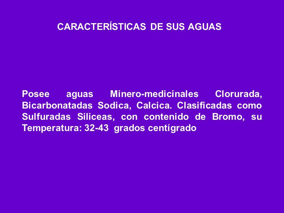 CARACTERÍSTICAS DE SUS AGUAS Posee aguas Minero-medicinales Clorurada, Bicarbonatadas Sodica, Calcica. Clasificadas como Sulfuradas Siliceas, con cont