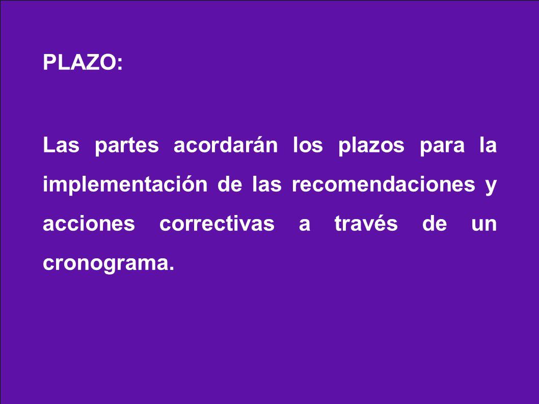PLAZO: Las partes acordarán los plazos para la implementación de las recomendaciones y acciones correctivas a través de un cronograma.