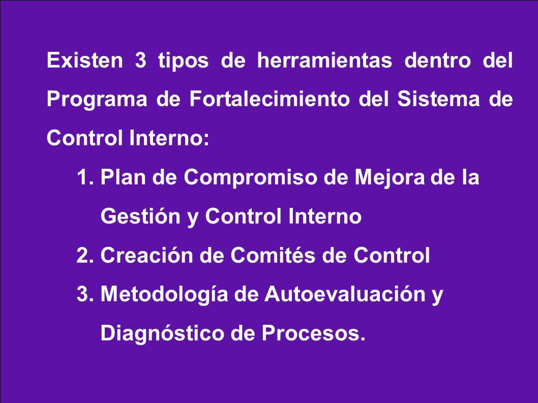 Existen 3 tipos de herramientas dentro del Programa de Fortalecimiento del Sistema de Control Interno: 1. Plan de Compromiso de Mejora de la Gestión y