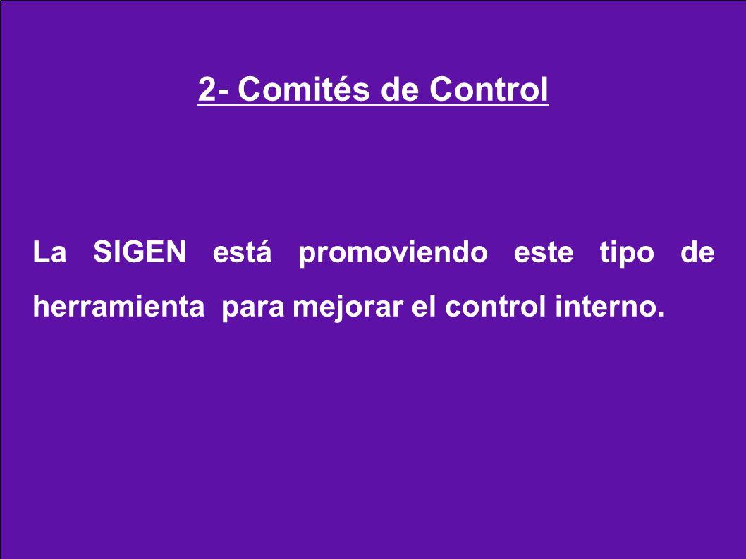 2- Comités de Control La SIGEN está promoviendo este tipo de herramienta para mejorar el control interno.