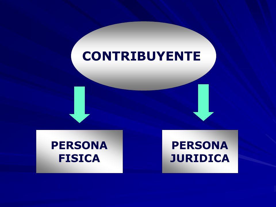 CONTRIBUYENTE PERSONA FISICA PERSONA JURIDICA