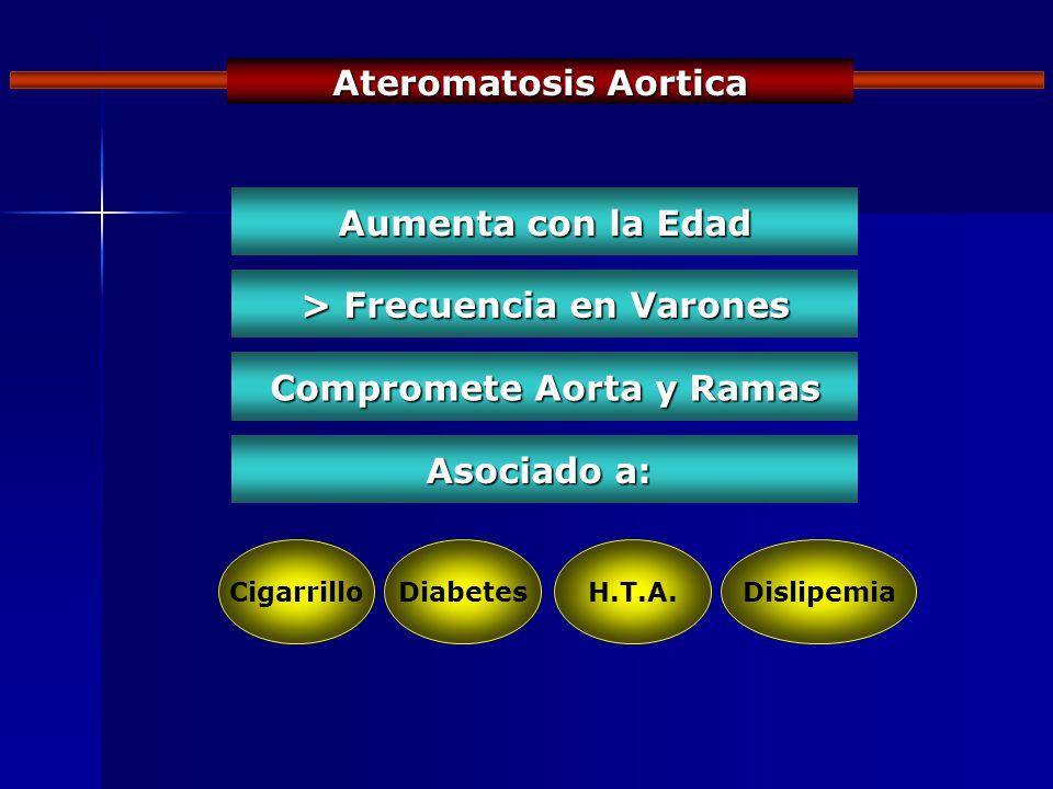 Ateromatosis Aortica Aumenta con la Edad > Frecuencia en Varones Compromete Aorta y Ramas Asociado a: CigarrilloDiabetesH.T.A.Dislipemia