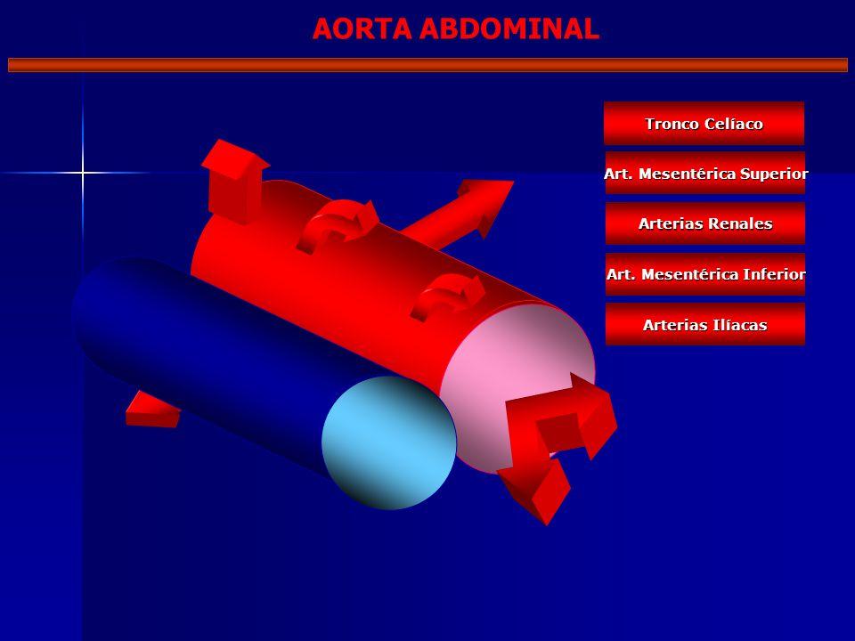 Tronco Celíaco Art. Mesentérica Superior Arterias Renales Art. Mesentérica Inferior Arterias Ilíacas AORTA ABDOMINAL