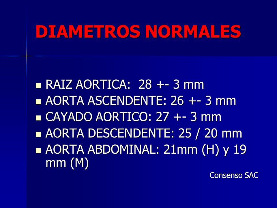 DIAMETROS NORMALES RAIZ AORTICA: 28 +- 3 mm RAIZ AORTICA: 28 +- 3 mm AORTA ASCENDENTE: 26 +- 3 mm AORTA ASCENDENTE: 26 +- 3 mm CAYADO AORTICO: 27 +- 3