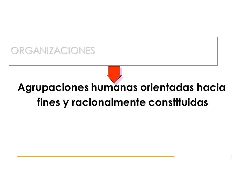 ORGANIZACIONESORGANIZACIONES Agrupaciones humanas orientadas hacia fines y racionalmente constituidas