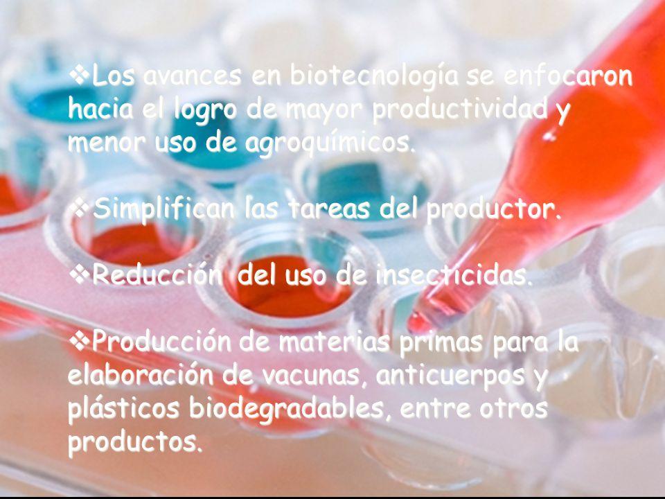 Los avances en biotecnología se enfocaron hacia el logro de mayor productividad y menor uso de agroquímicos.