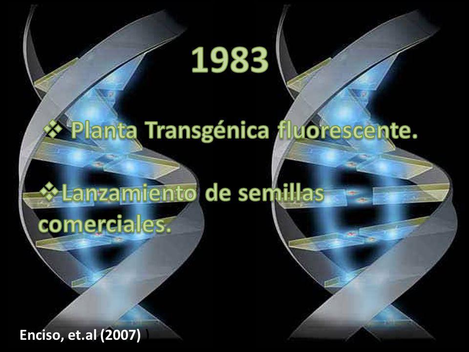 Enciso, et.al (2007) )