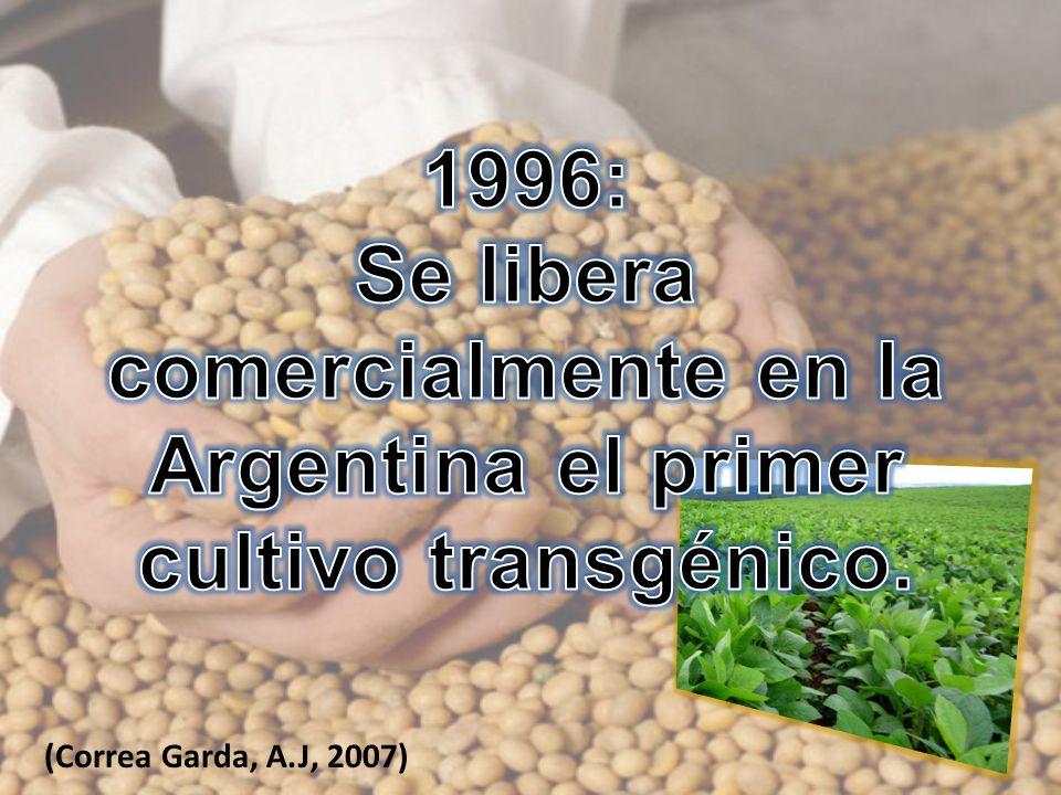(Correa Garda, A.J, 2007)
