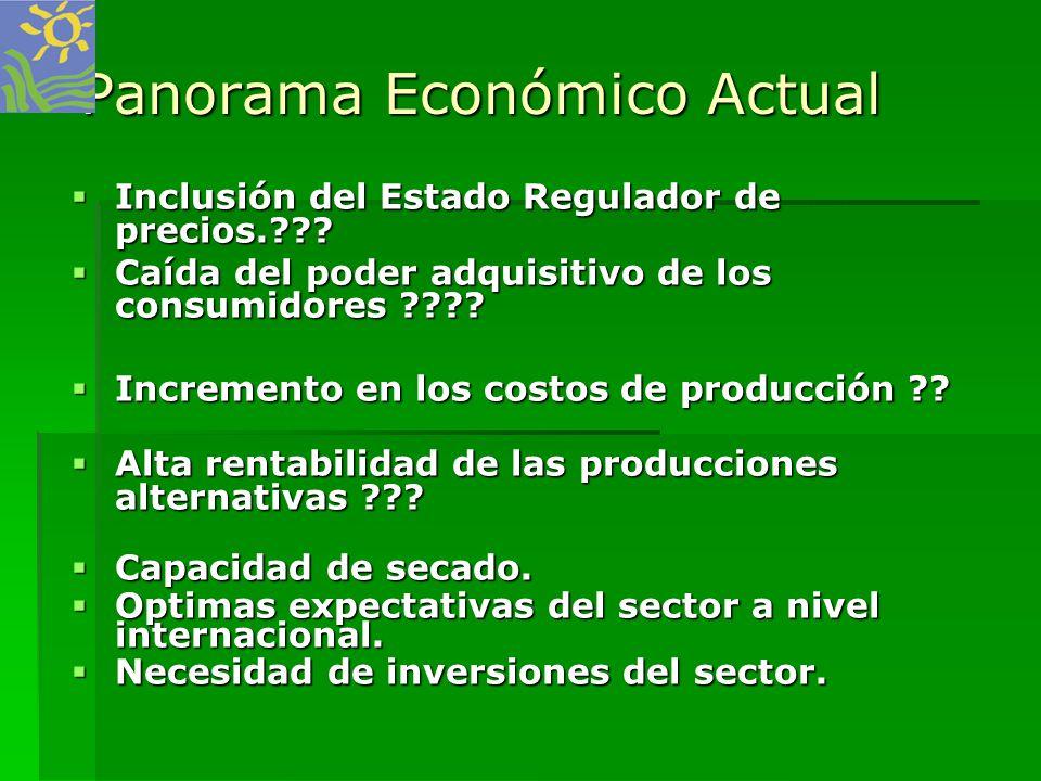 Panorama Económico Actual Inclusión del Estado Regulador de precios.??? Inclusión del Estado Regulador de precios.??? Caída del poder adquisitivo de l