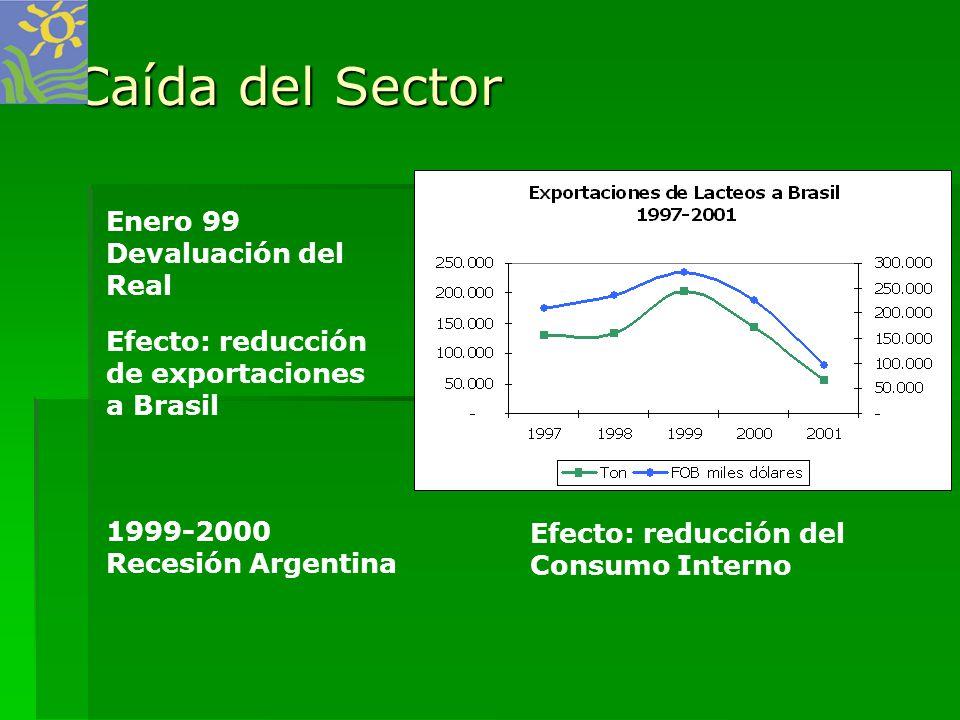 Caída del Sector Enero 99 Devaluación del Real Efecto: reducción de exportaciones a Brasil 1999-2000 Recesión Argentina Efecto: reducción del Consumo