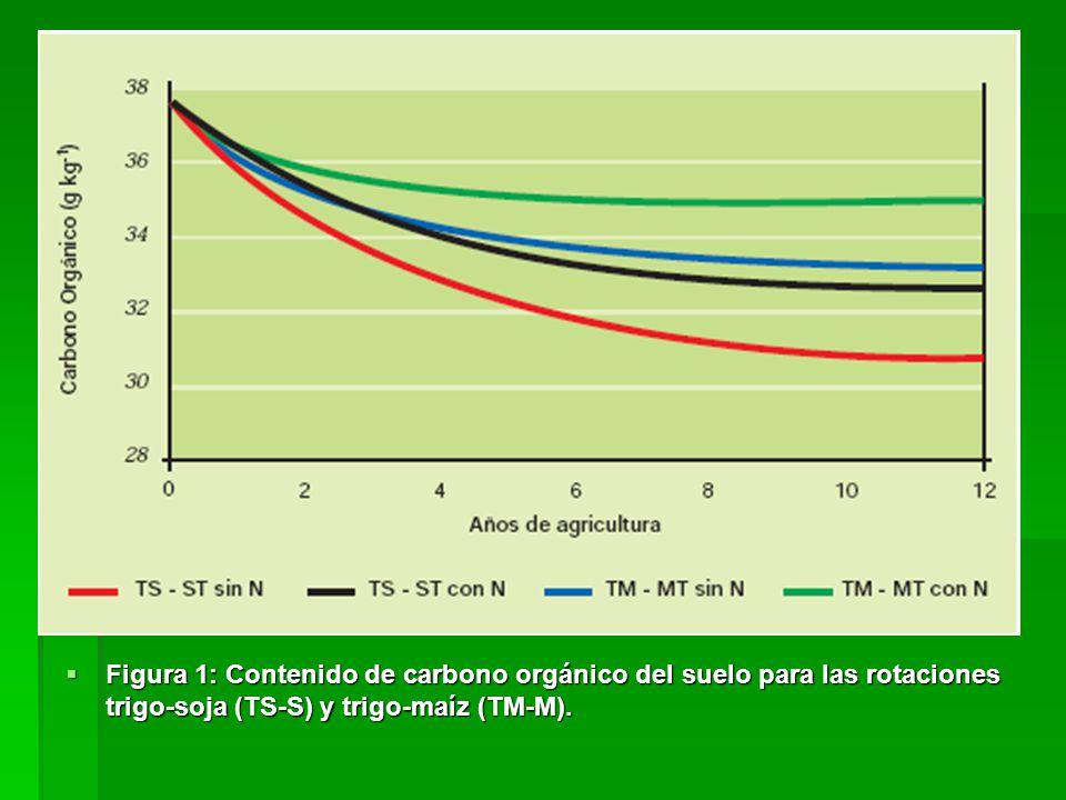 Figura 1: Contenido de carbono orgánico del suelo para las rotaciones trigo-soja (TS-S) y trigo-maíz (TM-M). Figura 1: Contenido de carbono orgánico d
