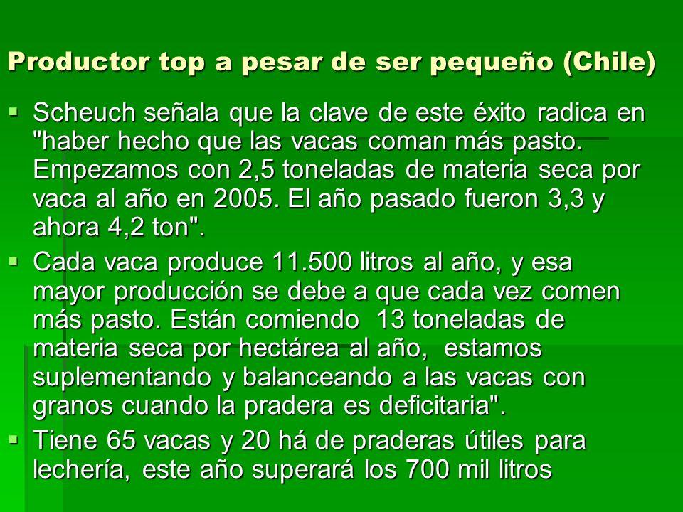 Productor top a pesar de ser pequeño (Chile) Scheuch señala que la clave de este éxito radica en