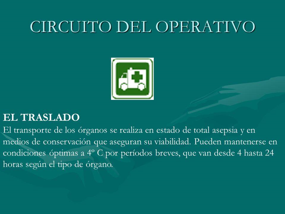 CIRCUITO DEL OPERATIVO EL TRASLADO El transporte de los órganos se realiza en estado de total asepsia y en medios de conservación que aseguran su viab