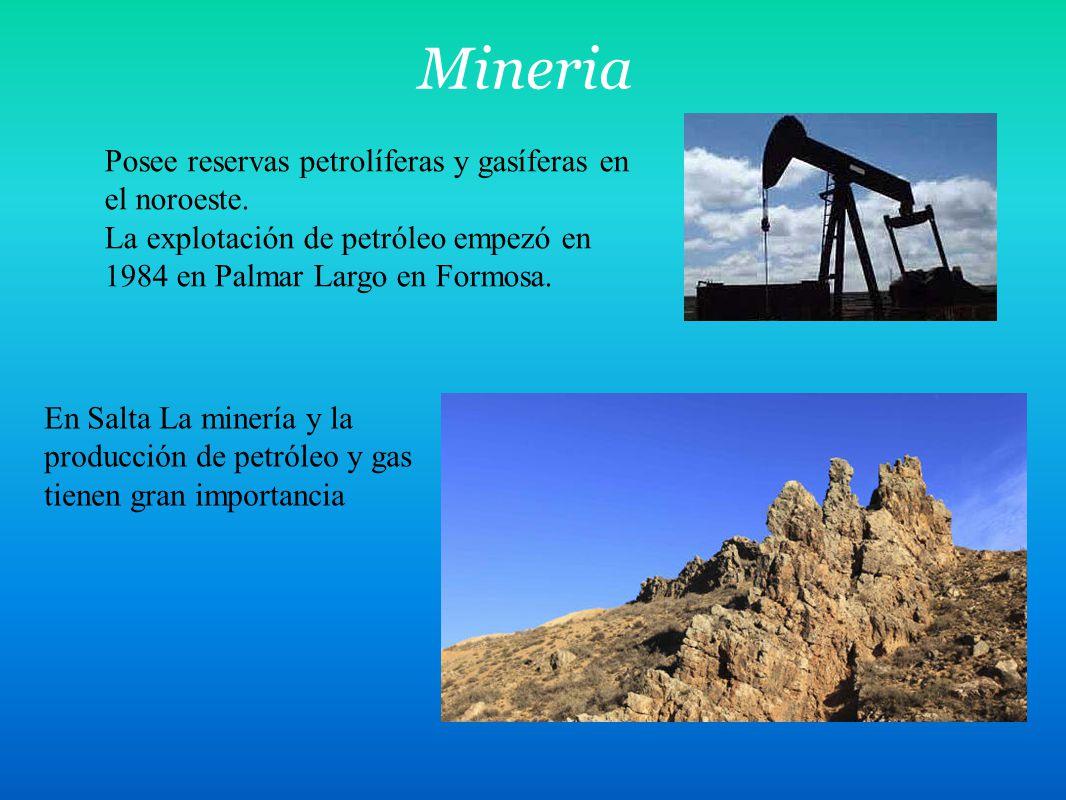Mineria Posee reservas petrolíferas y gasíferas en el noroeste. La explotación de petróleo empezó en 1984 en Palmar Largo en Formosa. En Salta La mine