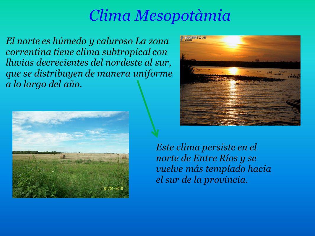 Clima Mesopotàmia El norte es húmedo y caluroso La zona correntina tiene clima subtropical con lluvias decrecientes del nordeste al sur, que se distri