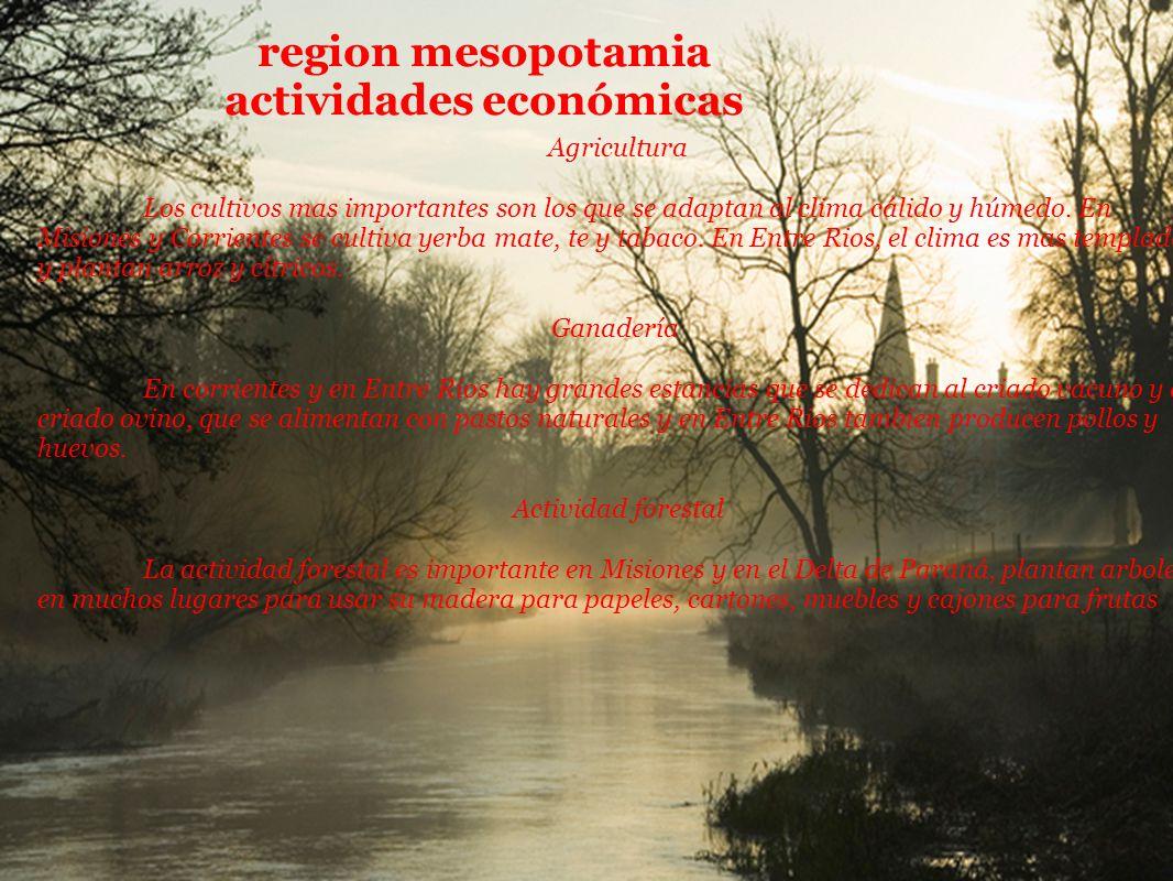 region mesopotamia actividades económicas Agricultura Los cultivos mas importantes son los que se adaptan al clima cálido y húmedo. En Misiones y Corr