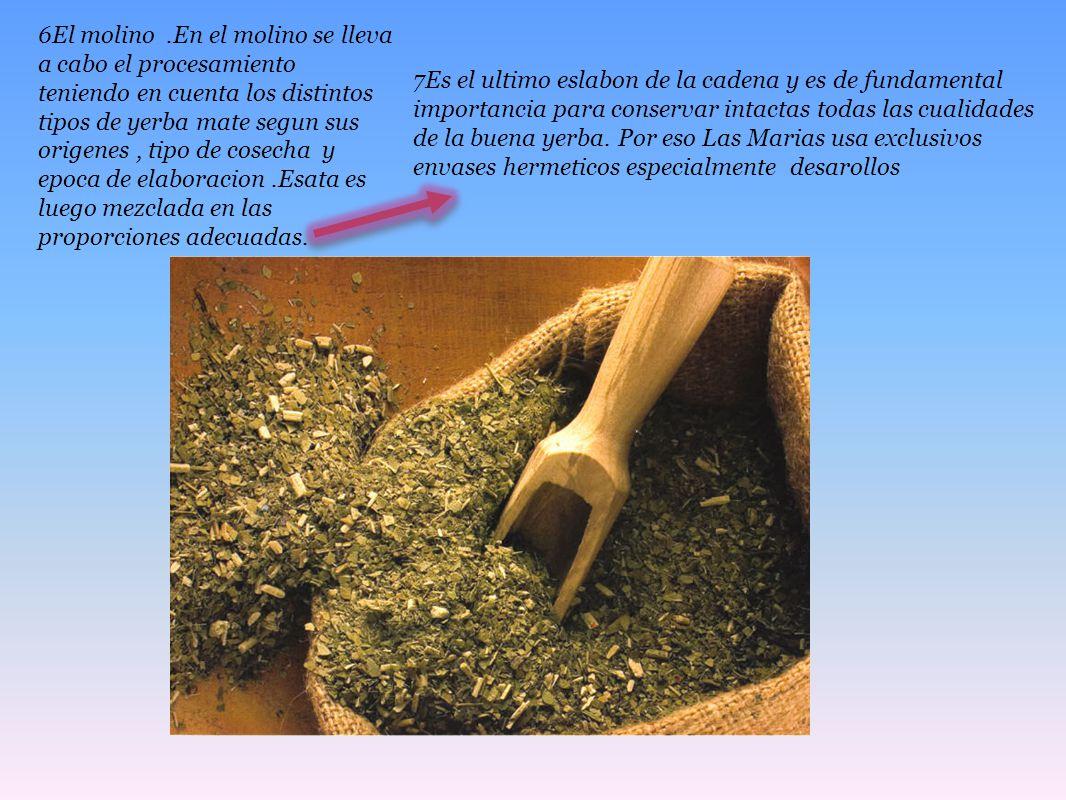 6El molino.En el molino se lleva a cabo el procesamiento teniendo en cuenta los distintos tipos de yerba mate segun sus origenes, tipo de cosecha y ep