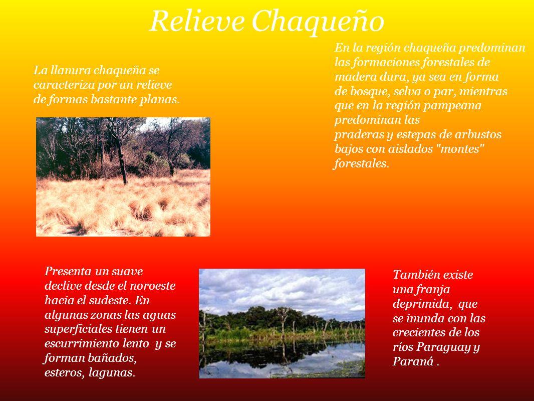 Relieve Chaqueño La llanura chaqueña se caracteriza por un relieve de formas bastante planas. Presenta un suave declive desde el noroeste hacia el sud