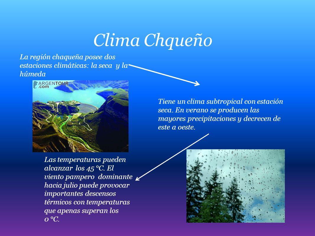 Clima Chqueño La región chaqueña posee dos estaciones climáticas: la seca y la húmeda Tiene un clima subtropical con estación seca. En verano se produ