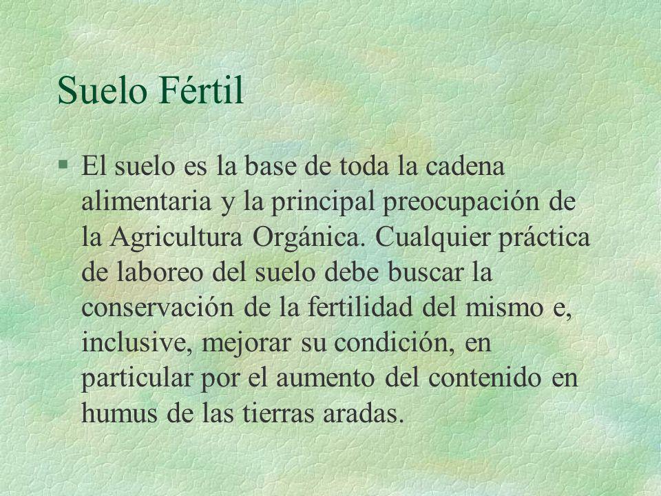 Suelo Fértil §El suelo es la base de toda la cadena alimentaria y la principal preocupación de la Agricultura Orgánica. Cualquier práctica de laboreo