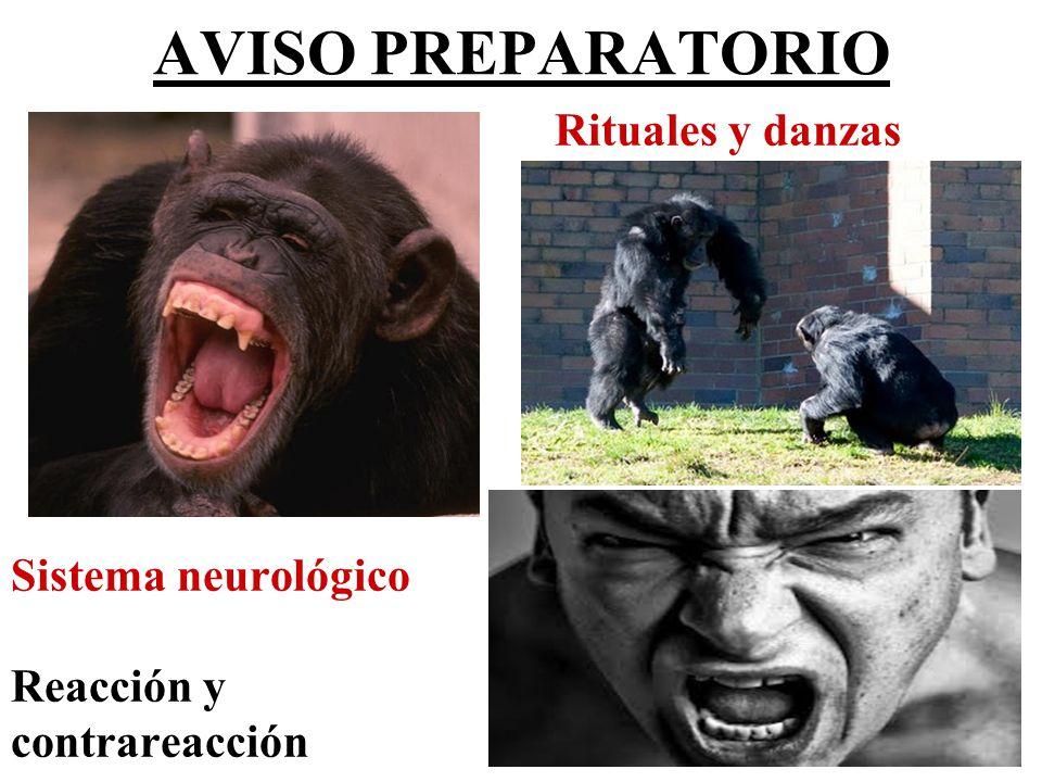 Amenazas Lesiones leves Lesiones graves Homicidio ¿DETECCIÓN.