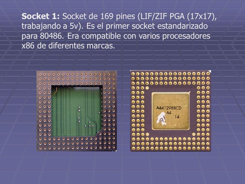 Socket 1: Socket de 169 pines (LIF/ZIF PGA (17x17), trabajando a 5v). Es el primer socket estandarizado para 80486. Era compatible con varios procesad
