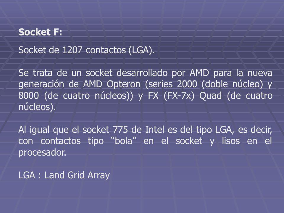 Socket de 1207 contactos (LGA). Se trata de un socket desarrollado por AMD para la nueva generación de AMD Opteron (series 2000 (doble núcleo) y 8000