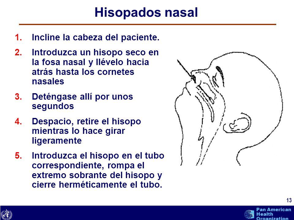 text 13 Pan American Health Organization Hisopados nasal 1.Incline la cabeza del paciente. 2.Introduzca un hisopo seco en la fosa nasal y llévelo haci