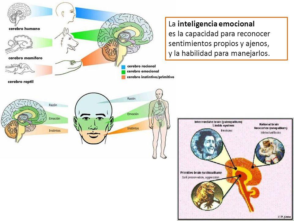 La inteligencia emocional es la capacidad para reconocer sentimientos propios y ajenos, y la habilidad para manejarlos.