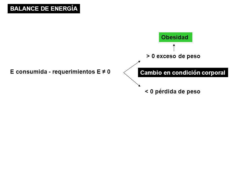 E consumida - requerimientos E 0 > 0 exceso de peso < 0 pérdida de peso Obesidad BALANCE DE ENERGÍA Cambio en condición corporal