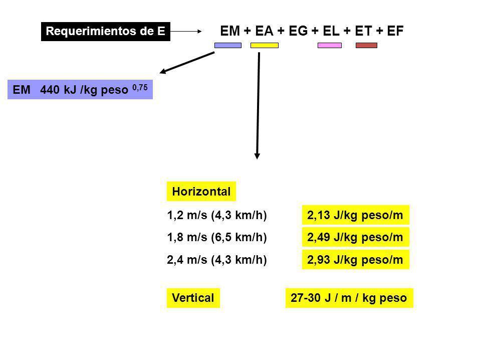 EM + EA + EG + EL + ET + EF Requerimientos de E 440 kJ /kg peso 0,75 EM Horizontal 27-30 J / m / kg peso 2,13 J/kg peso/m Vertical 1,2 m/s (4,3 km/h)