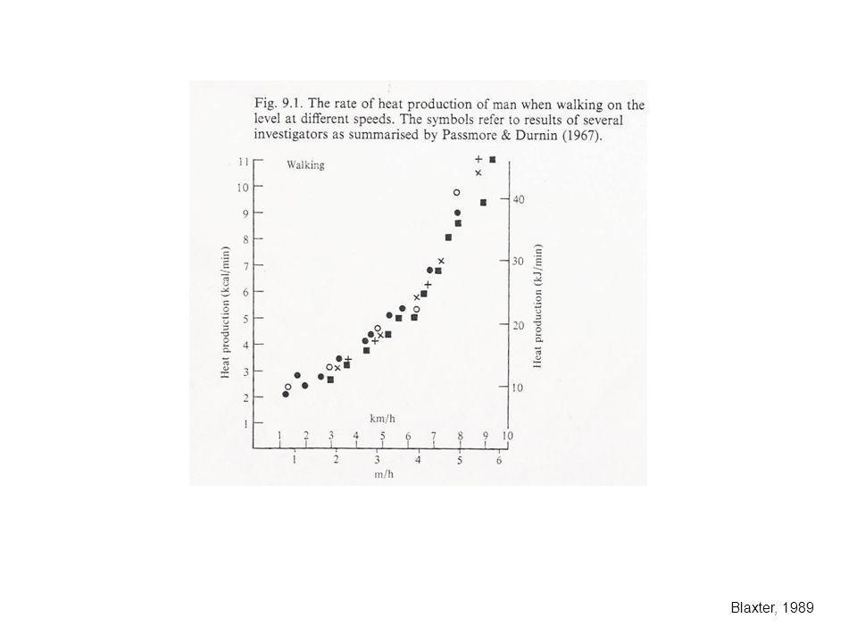 Movilización de tejidos corporales en las primeras semanas de lactancia 1) Requerimientos E > E consumida Balance E negativo 2) Requerimientos de nutrientes específicos por la glándula mamaria, a tasas que no pueden ser cubiertas por la absorción de nutrientes desde el tubo digestivo.
