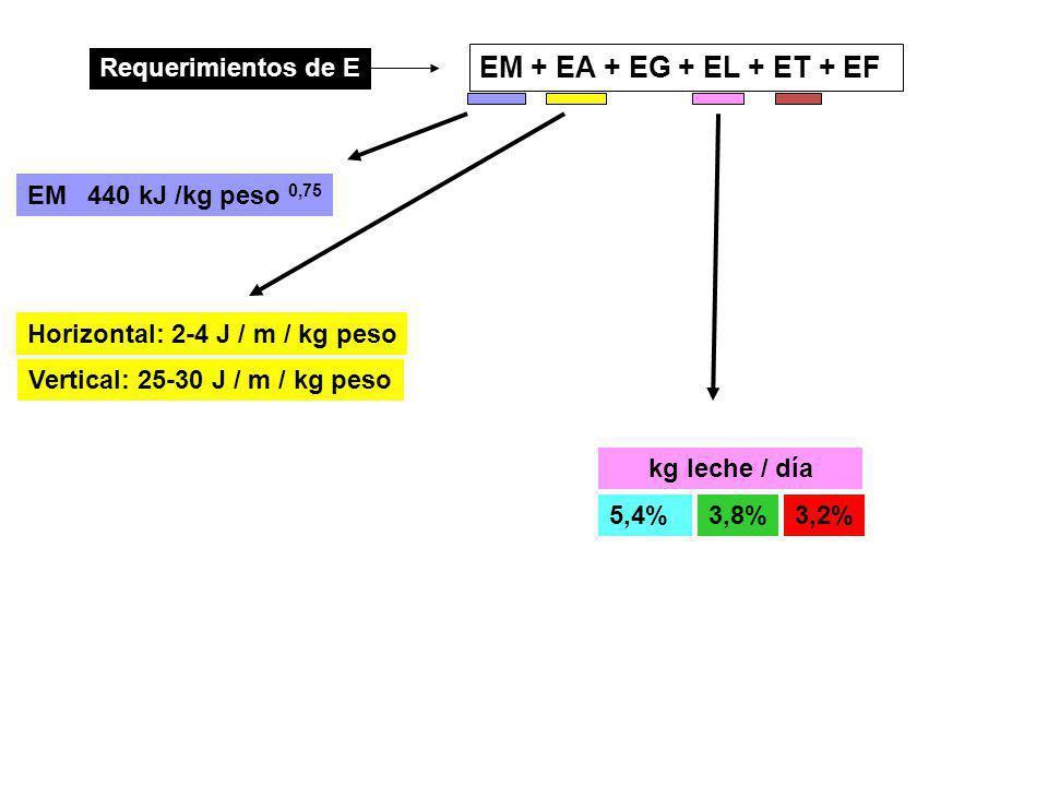 EM + EA + EG + EL + ET + EF Requerimientos de E 440 kJ /kg peso 0,75 EM Horizontal: 2-4 J / m / kg peso Vertical: 25-30 J / m / kg peso 5,4%3,8%3,2% kg leche / día