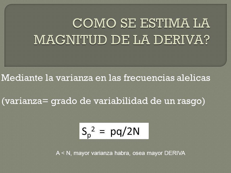 Mediante la varianza en las frecuencias alelicas (varianza= grado de variabilidad de un rasgo) S p 2 = pq/2N A < N, mayor varianza habra, osea mayor D