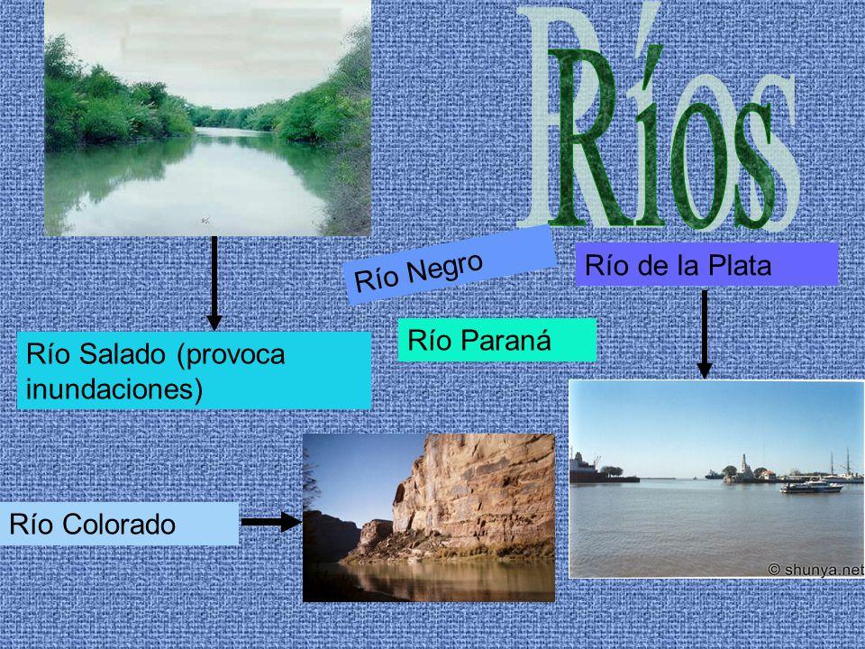 Río de la Plata Río Salado (provoca inundaciones) Río Colorado Río Negro Río Paraná
