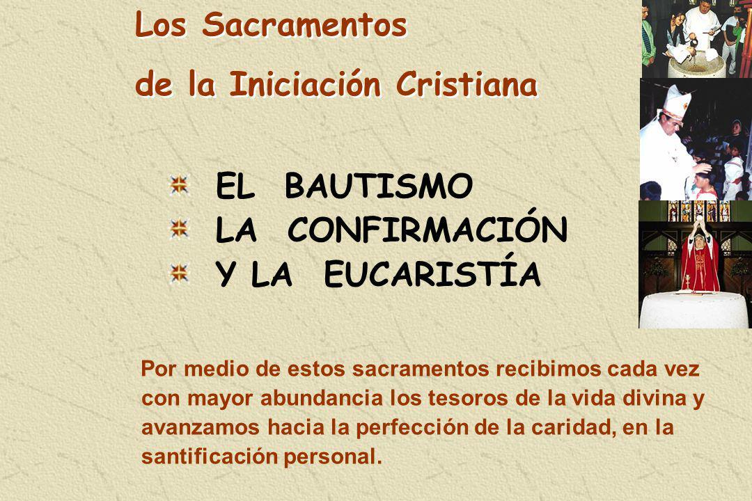 Por medio de estos sacramentos recibimos cada vez con mayor abundancia los tesoros de la vida divina y avanzamos hacia la perfección de la caridad, en