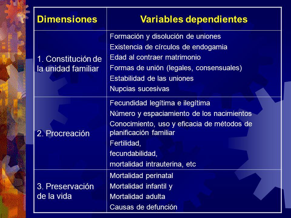 DimensionesVariables dependientes 1.
