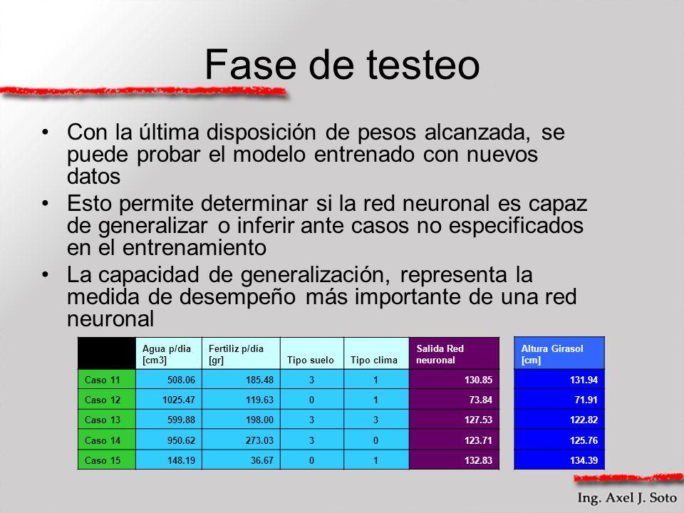 Fase de testeo Con la última disposición de pesos alcanzada, se puede probar el modelo entrenado con nuevos datos Esto permite determinar si la red ne